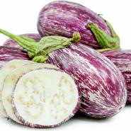 بذر بادمجان پاندورا
