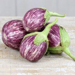 بذر بادمجان کالیوپ هیبرید