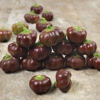 بذر فلفل زنگوله شکلاتی