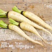 بذر هویج سفید