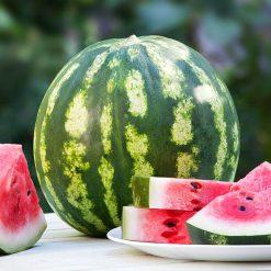 کاشت هندوانه