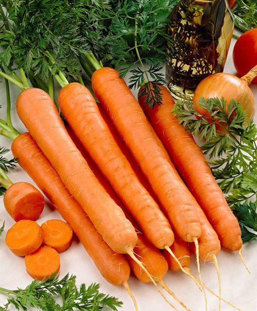کاشت بذر هویج