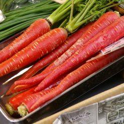 بذر هویج قرمز