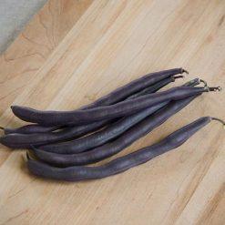 لوبیا سیاه