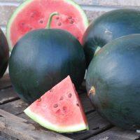 بذر هندوانه سیاه ژاپنی