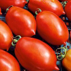 گوجه فرنگی لیمویی قرمز