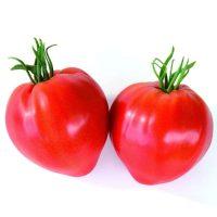 بذر گوجه فرنگی قلبی