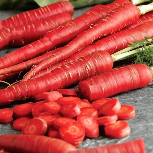 بذر هویج هیبرید قرمز