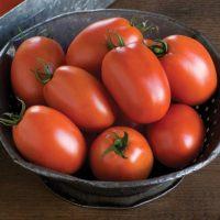 گوجه فرنگی سوپر چف