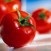 بذر گوجه فرنگی سوپر کویین