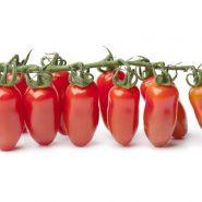 گوجه فرنگی سان مارزنو