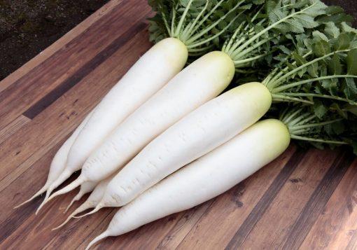 بذر تربچه سفید