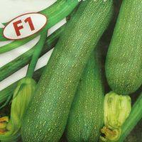 بذر کدو خورشتی سبز روشن