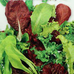 بذر سبزیجات میکس
