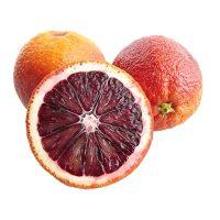نهال پرتقال توسرخ کشیده
