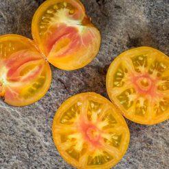 بذر گوجه فرنگی الماس