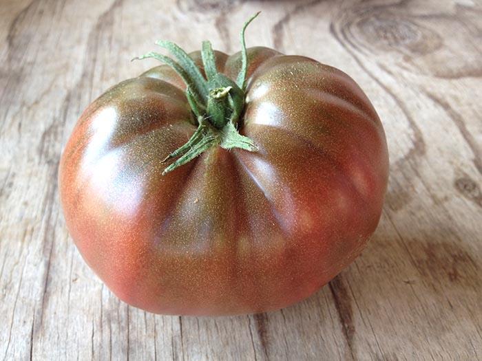 بذر گوجه فرنگی روسی