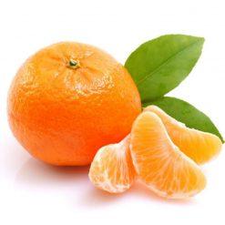 نهال نارنگی ژاپنی