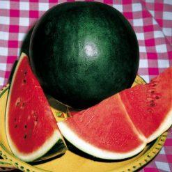 بذر هندوانه شوگر بیبی