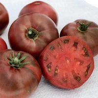 بذر گوجه فرنگی ارغوانی کربن