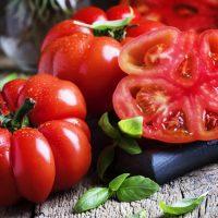 بذر گوجه فرنگی دلمه ای