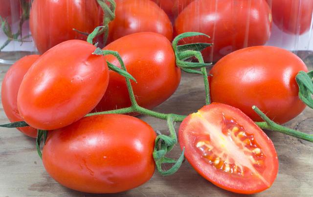 بذر گوجه فرنگی گیلاسی عناب قرمز