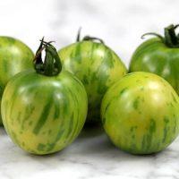 بذر گوجه فرنگی سبز Vernissage