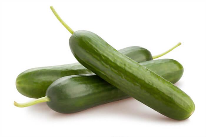 بذر خیار بوته ای آریا