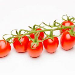 بذر گوجه فرنگی چری