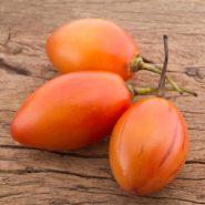 بذر میوه تاماریلو نارنجی