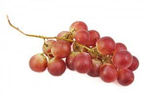 بذر انگور رد گلوب