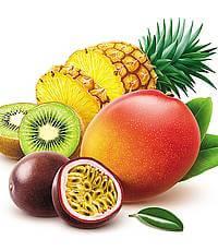 بذر میوه و درخت