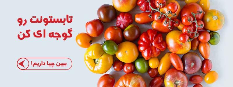 خرید بذر گوجه ارگانیک