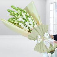 پیاز گل مریم