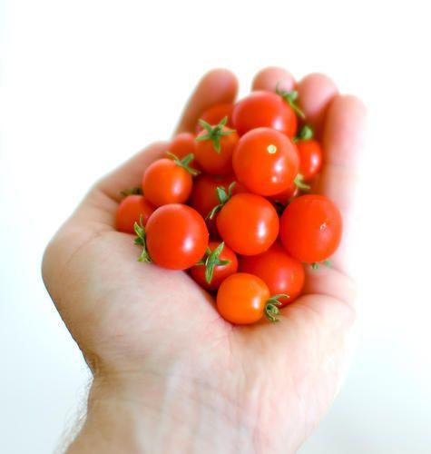 بذر گوجه فرنگی مینیاتوری