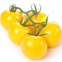 بذر گوجه چری زرد