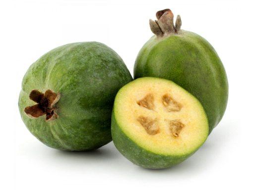 بذر فیجوا